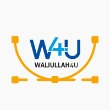 waliullah4u